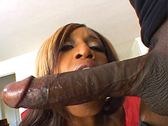 Gigantic black snake screwing sexy ebony babe for cum