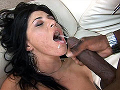 Ebony gal sucking big black cock and anal fucked