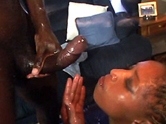 Huge black dick drilling cunt ebony babe and gives facial cum