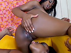 Black dykes plunge toys inside each other. Dazz & Tiffany Staxxx