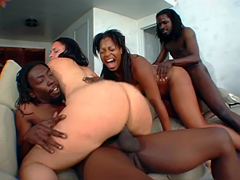 Big black butts orgy with luscious ebony babe Lenore. He drilled in all position