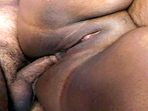 Black bbw ebony white cocks are