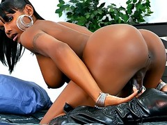 Big booty black shemale shows off