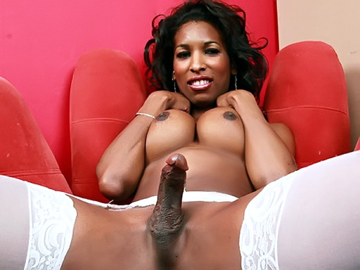 Shemale with hard cock Black