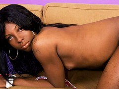 Black tgirl shows of her big cock