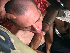 Our boi Harley is brought into Principal Hole Hunter's office by Professor Dano for some..