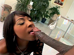 Roxy Reynolds look hot and sexy black whore but she's going to be treated like a slutty fucktoy..