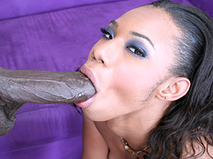 Pleasure Bunny blows stiff black dork till she gets fucked
