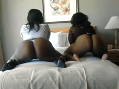 Two fat sluts with big ass on the bed